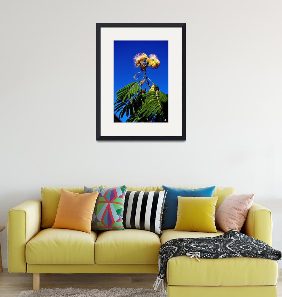 """""""Exotic Flowers of the Tropical Garden""""  (2009) by JoaoPonces"""
