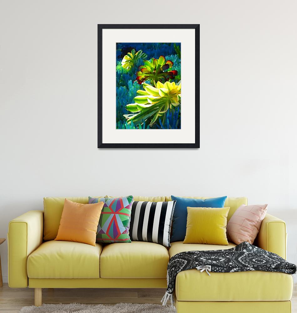 """""""Succulents Backlit on Blue 3""""  (2009) by AmyVangsgard"""