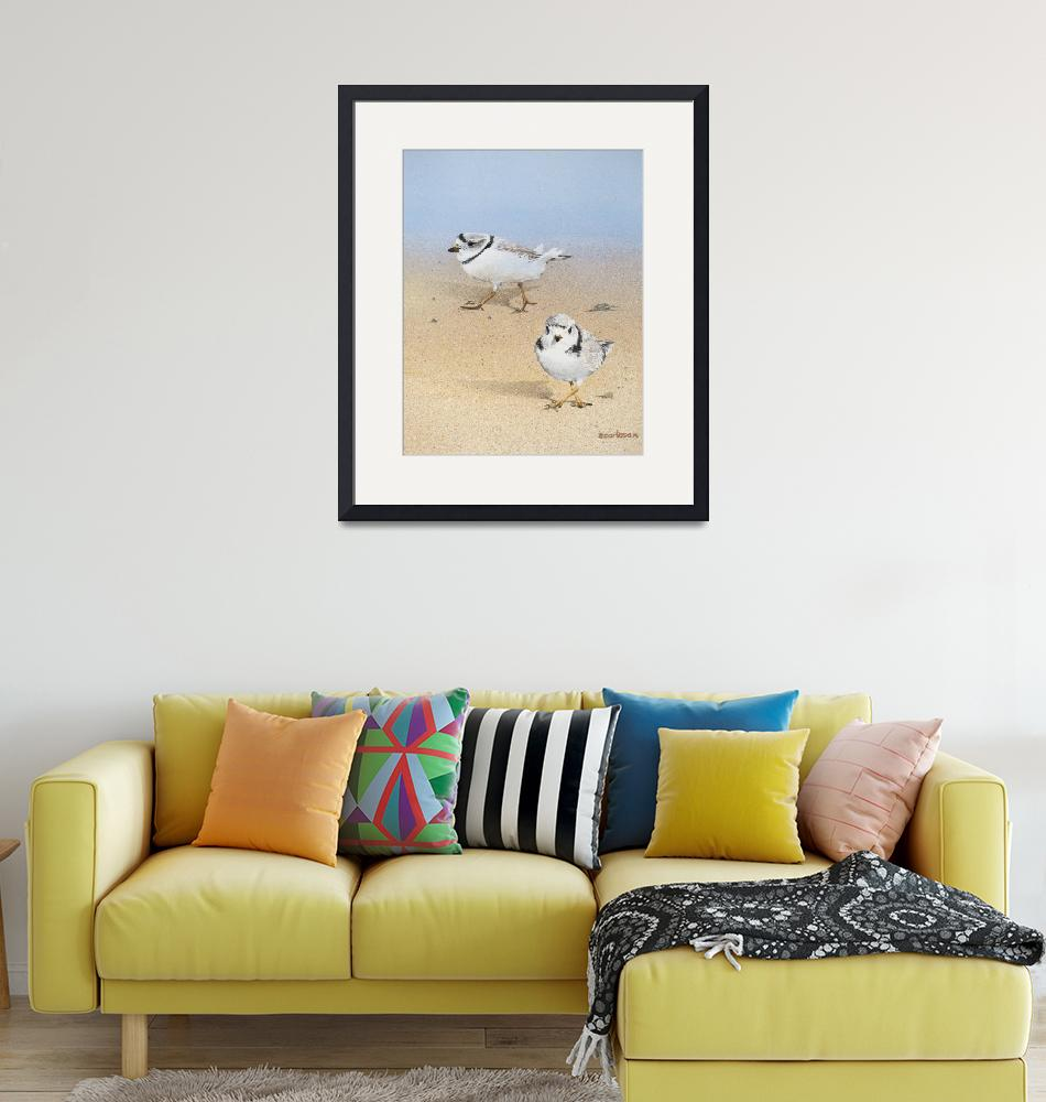"""""""Piping Plovers""""  (2014) by Ezartesa"""