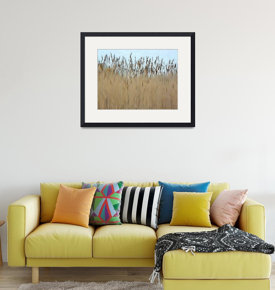 """Cat tail Grass""  (2008) by deedemigjorn"