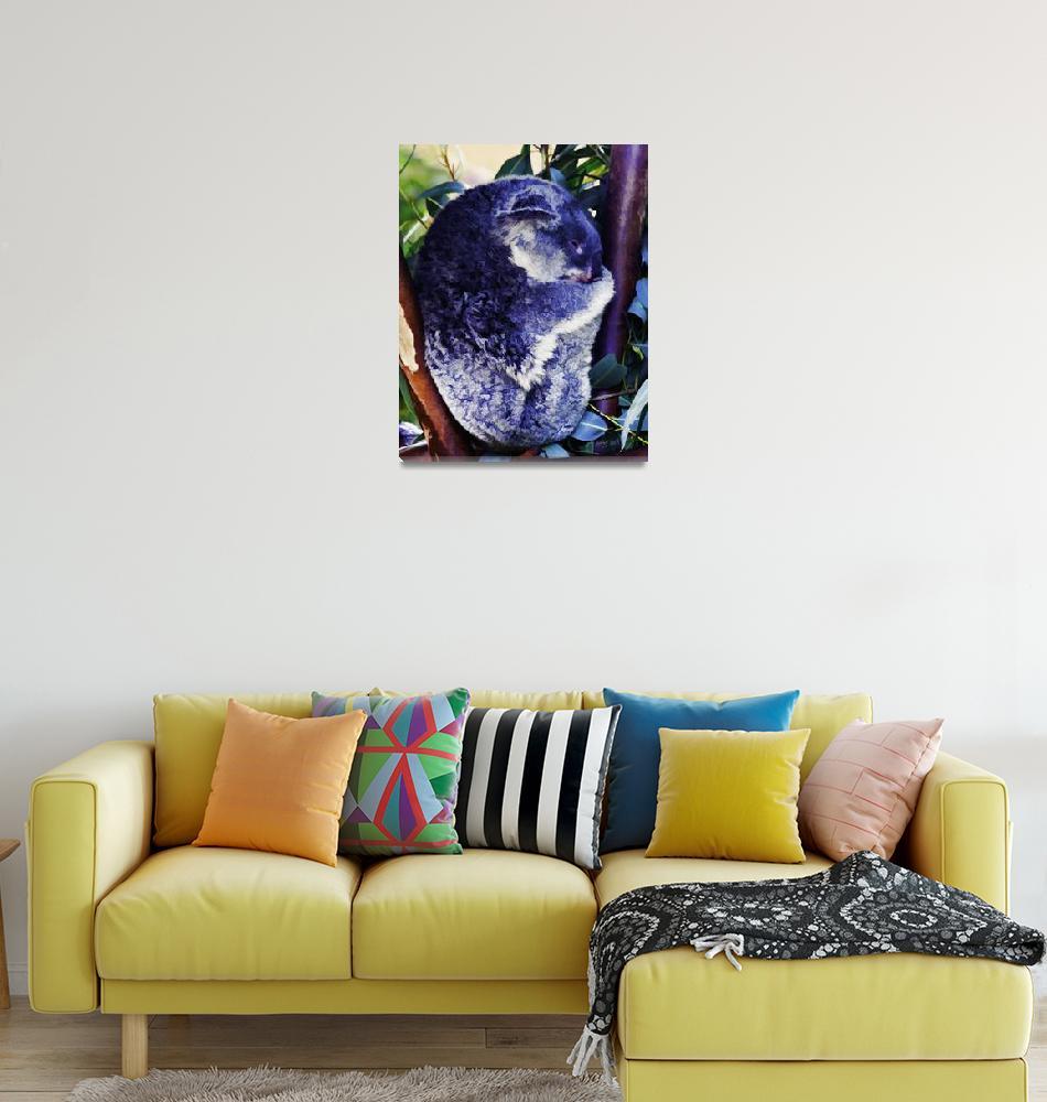 """""""Koala Bear Digital Watercolor""""  (2009) by johncorney"""