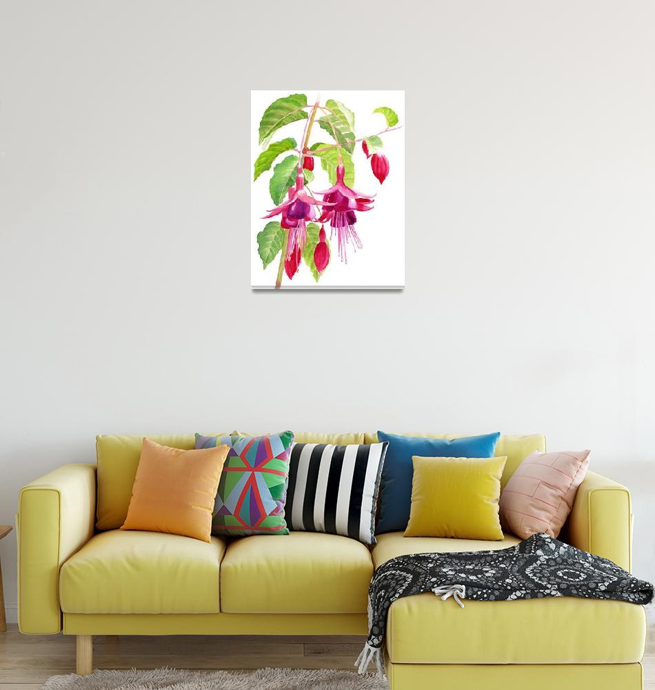 """""""Red and Purple Fuchsias white background""""  (2015) by Pacific-NW-Watercolors"""