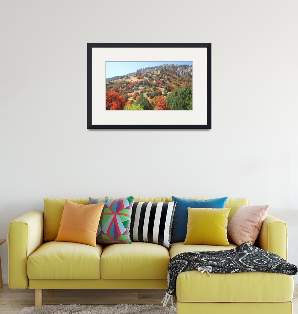 """""""Riot of colors on foothill""""  (2012) by Artpixie"""