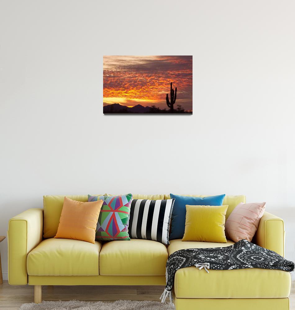 """Arizona November Sunrise With Saguaro""  (2011) by lightningman"