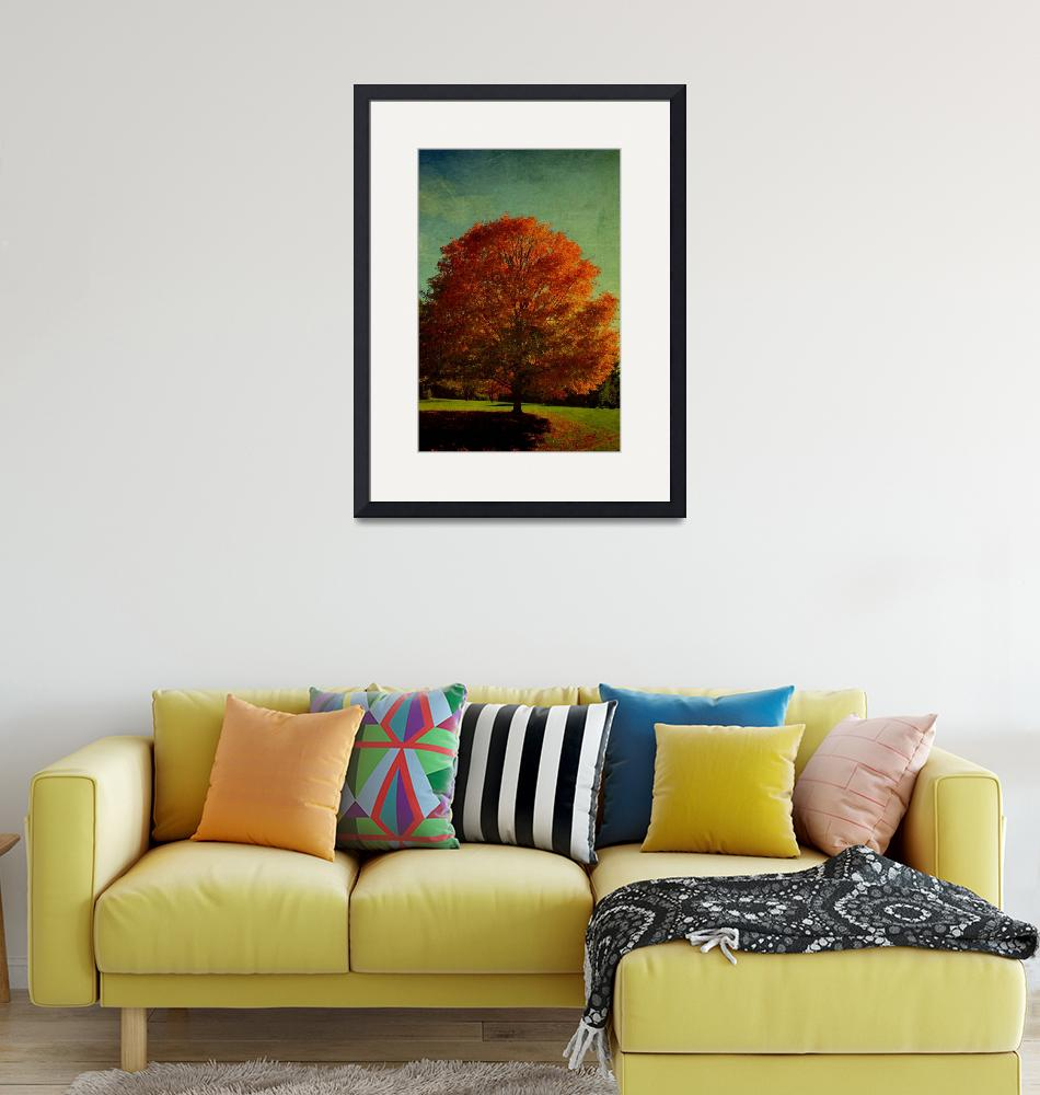 """""""October 21 AUTUMN TREES22-1"""" by manymuses"""