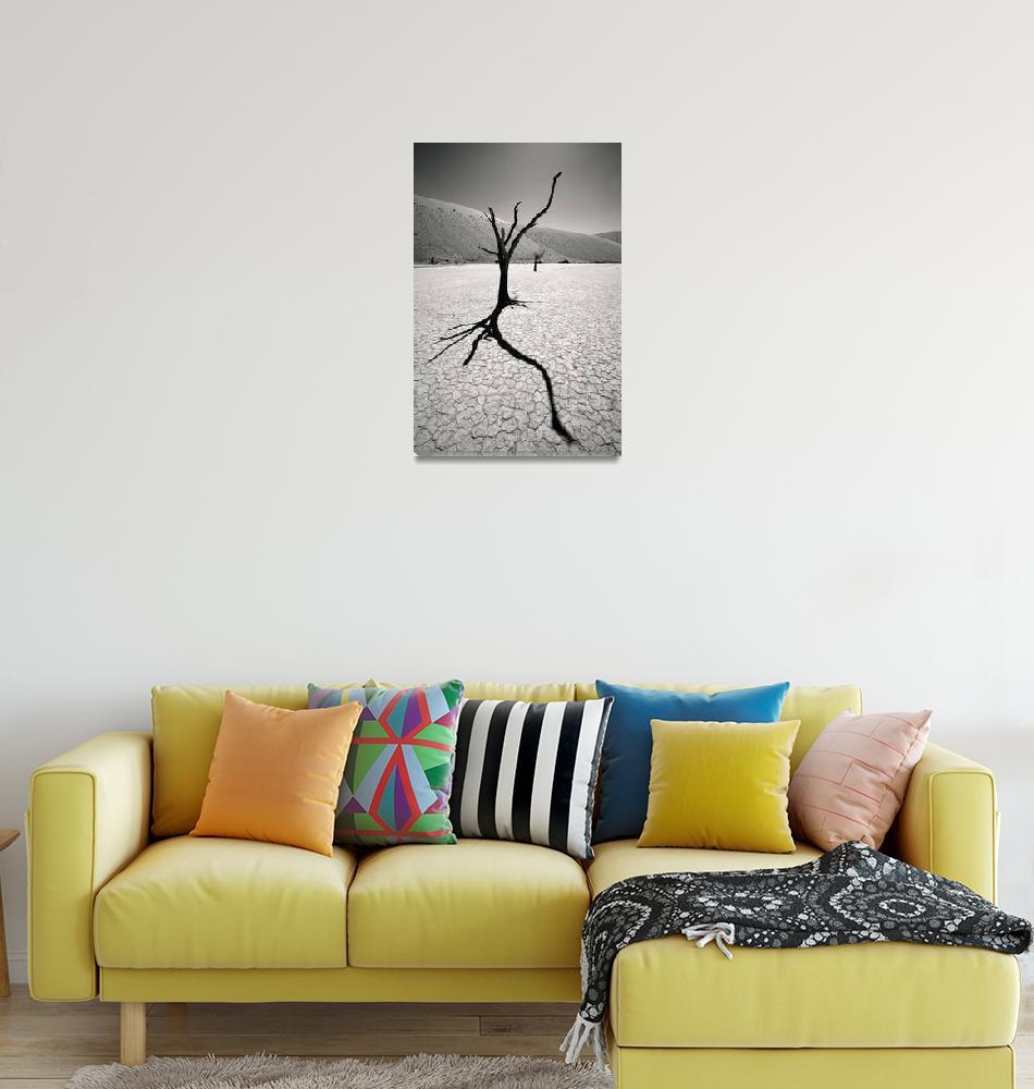 """""""Surreal Desert Landscape""""  (2008) by mlenny"""