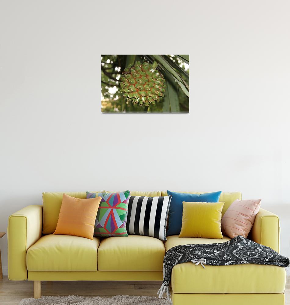 """""""Exotic fruit""""  (2011) by easyfigure"""