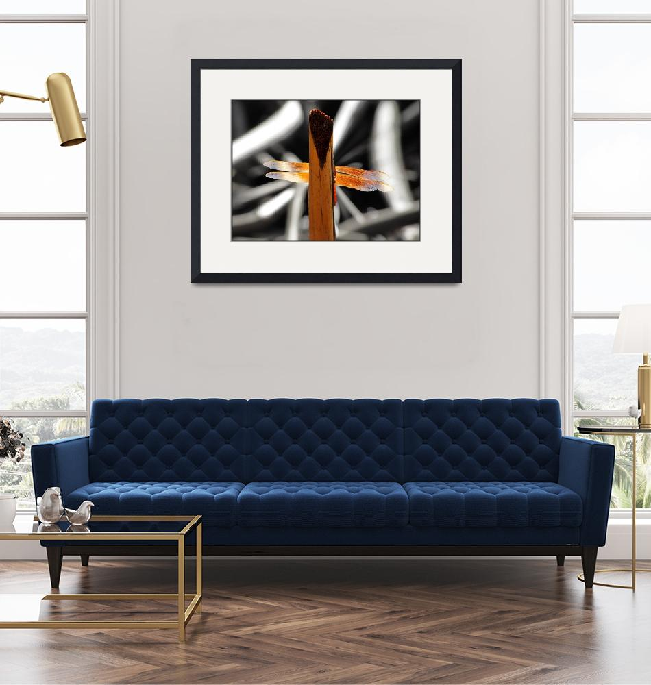 """Flame Skimmer Dragonfly""  (2011) by angelstudio54"