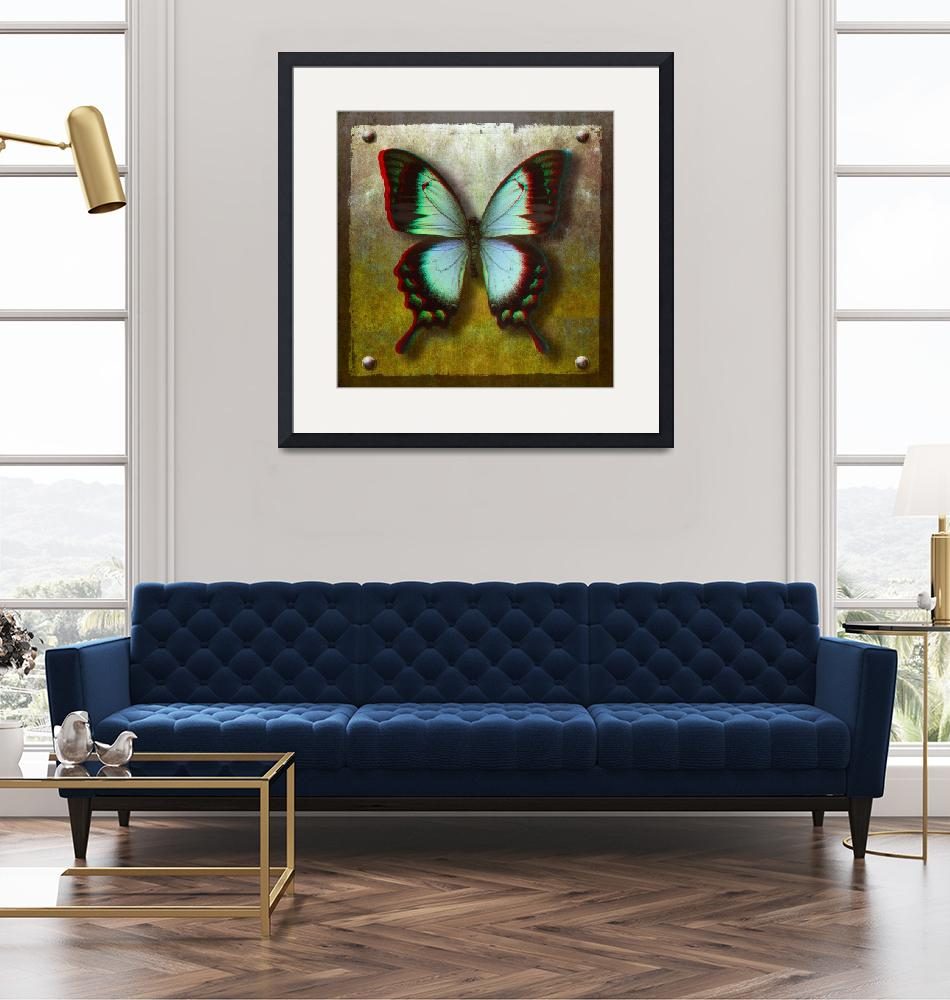 """""""3D Anaglyph-Radiant Swallowtail Butterfly""""  (2013) by vincent-field_photography"""