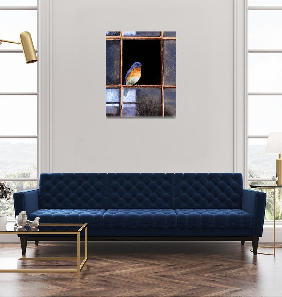 """barn window / eastern bluebird""  (2008) by rchristophervest"