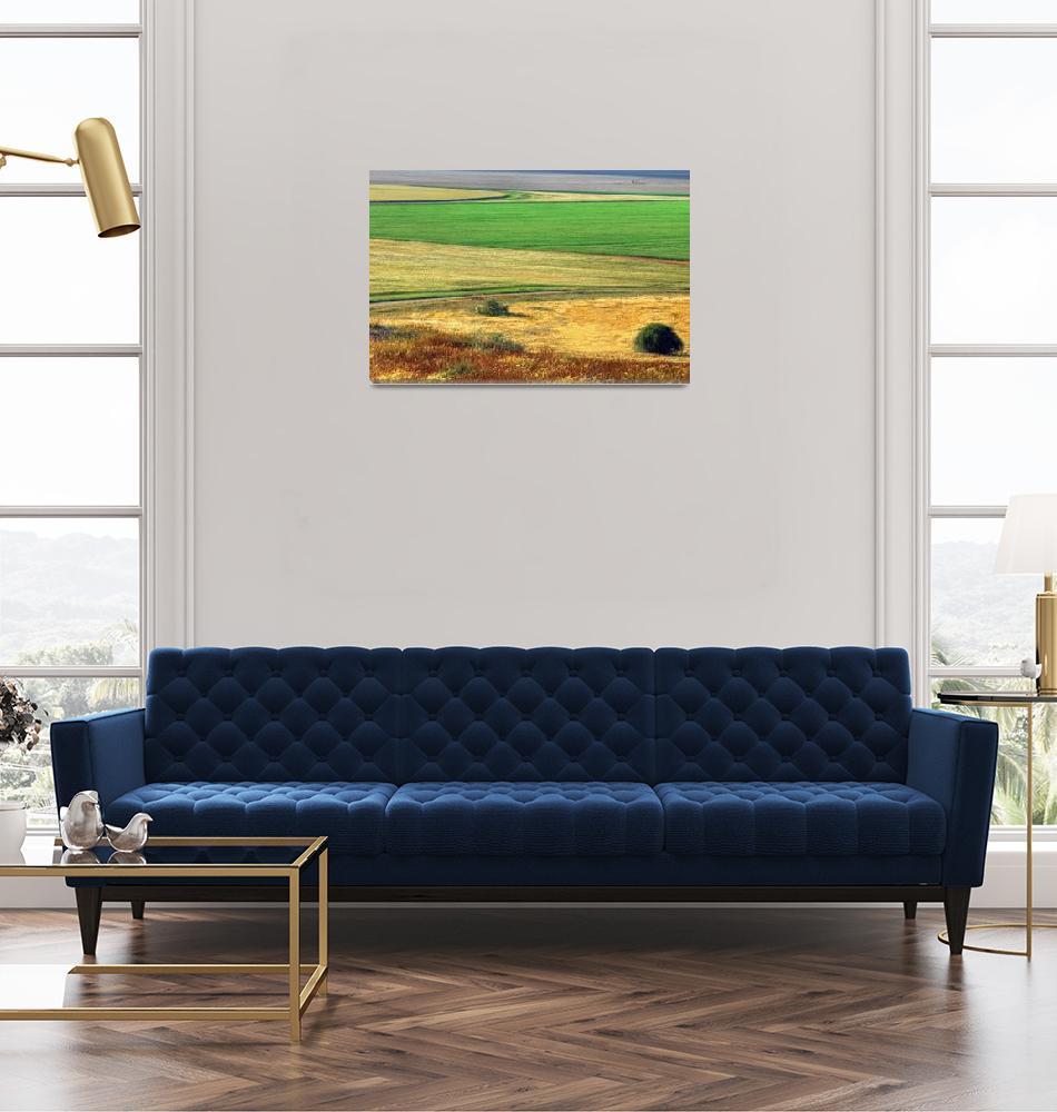 """""""Wheat field""""  (2007) by eyalna"""