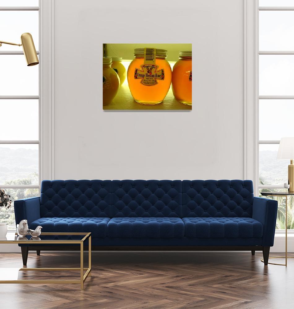 """""""Florida Jar of Honey""""  (2008) by matt707"""
