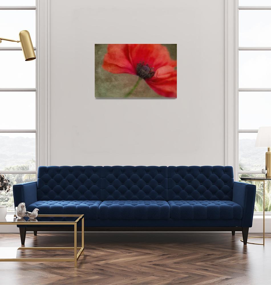 """red poppy""  (2014) by Piri"