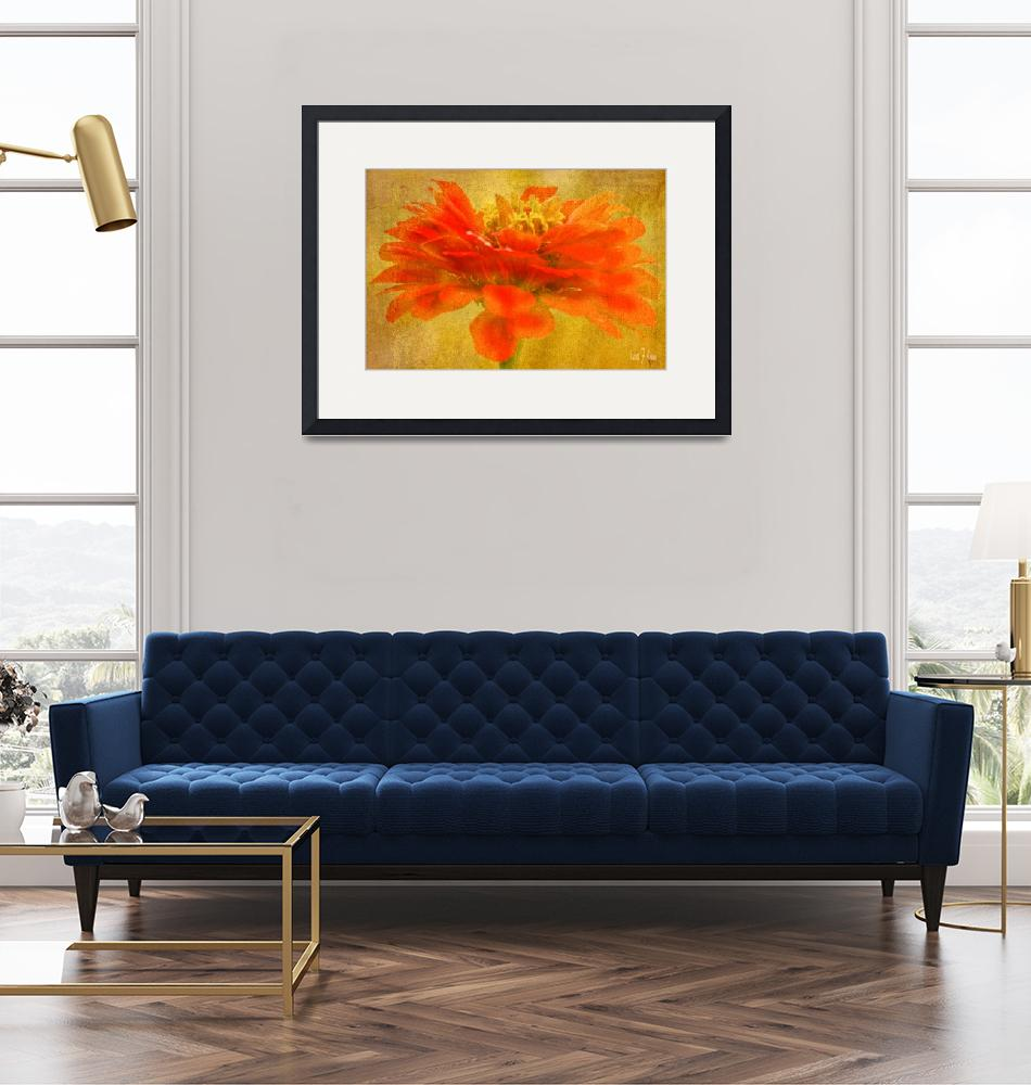 """Zinnia Red Orange Color Floral Wall Art""  (2013) by PhotographsByCarolFAustin"
