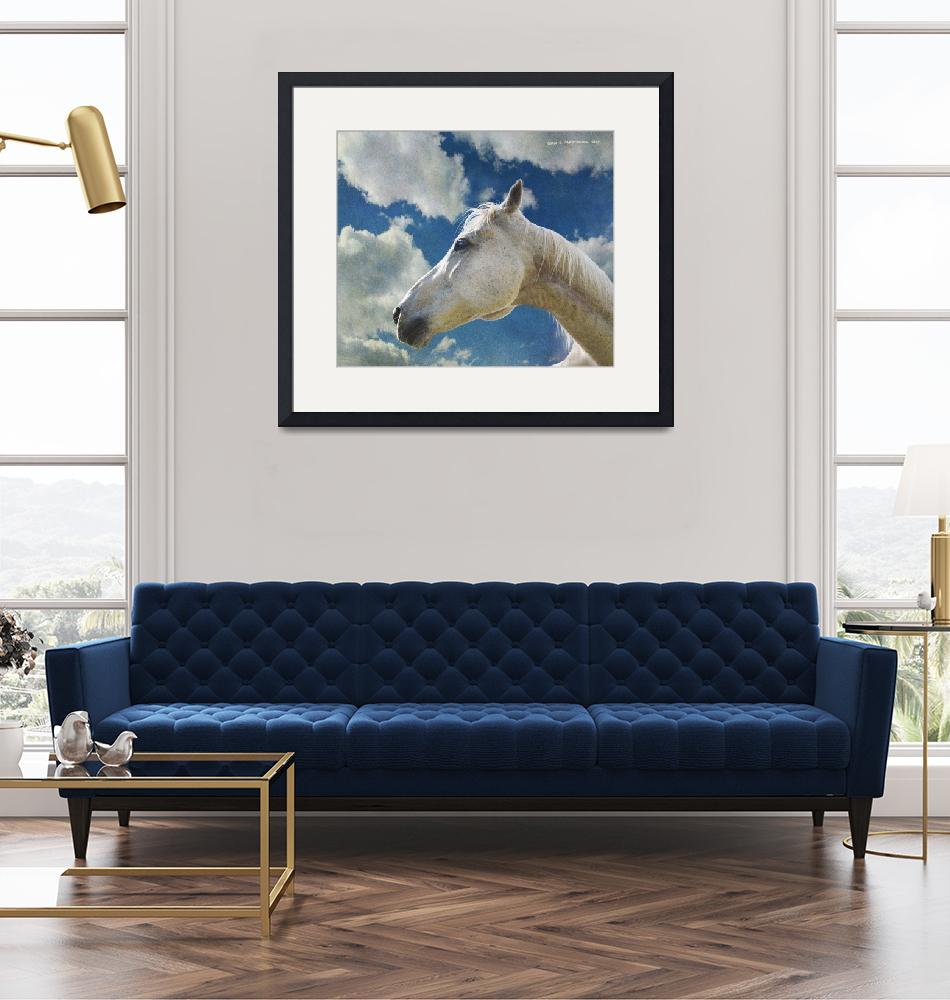 """""""white horse against sky""""  (2020) by rchristophervest"""