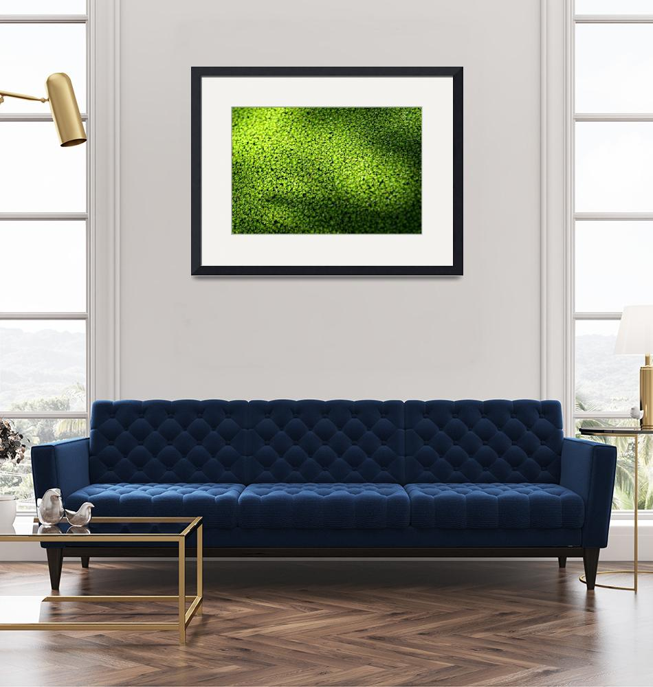 """Green Envy""  (2006) by ispyimagination"