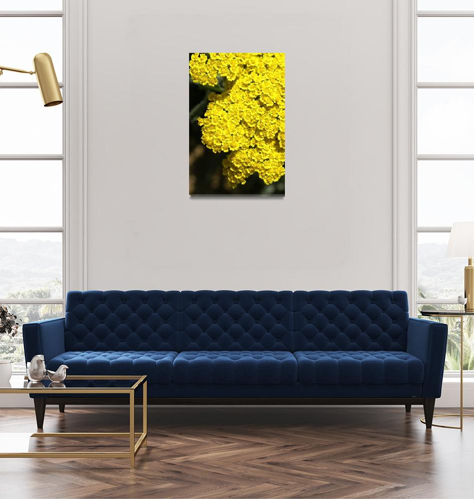 """""""Yellow""""  (2009) by ispyimagination"""