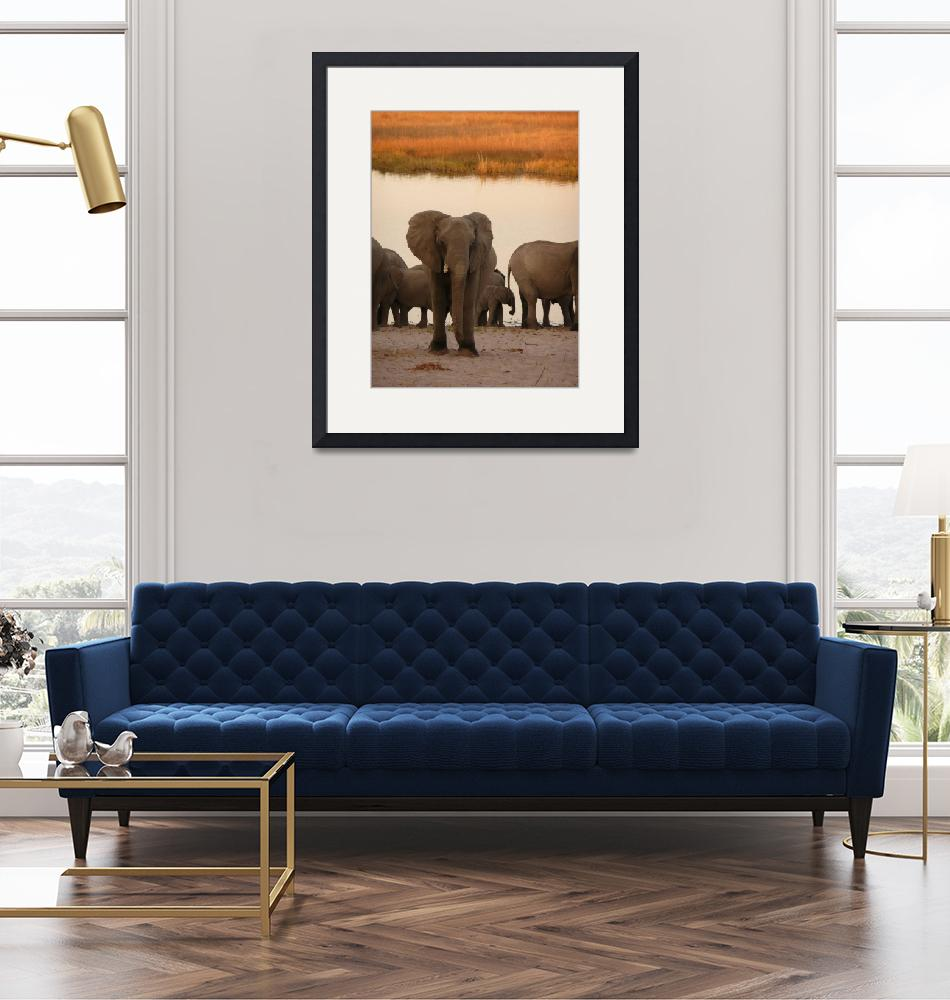 """""""Lost African elephant""""  (2007) by clapar"""