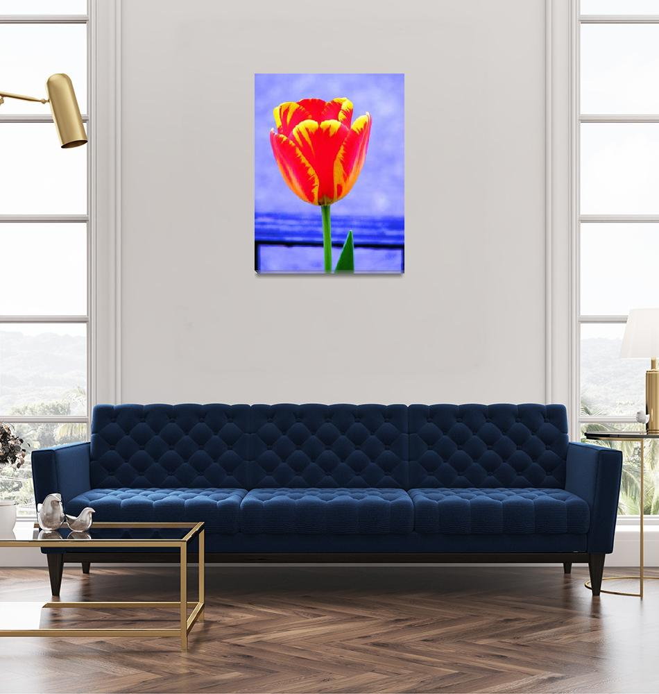 """""""Tulip on Blue""""  (2008) by mmcclain"""