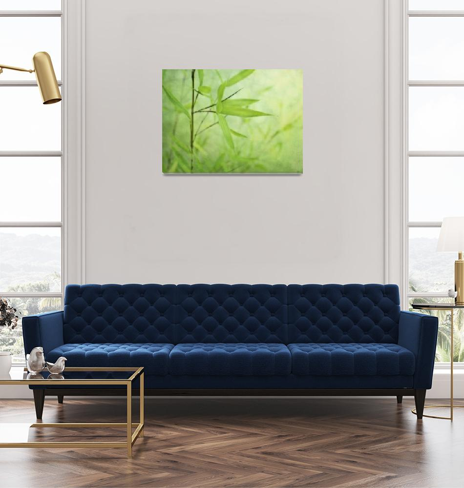 """Bambou Jardin""  (2010) by Piri"