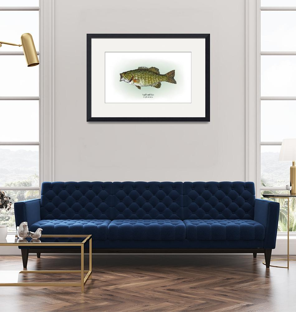 """Smallmouth Bass""  by RalphMartens"