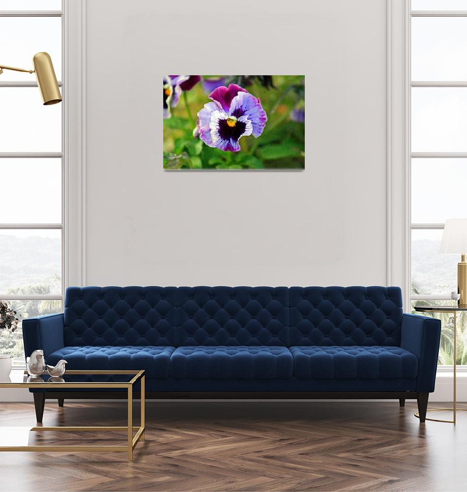 """Pansy Flower Close-up""  (2012) by KsWorldArt"