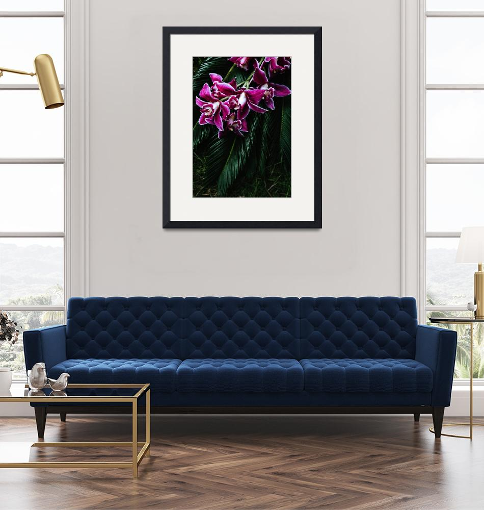 """""""xxTropical Purple Dendrobium Orchids and Sago Palm""""  (2019) by ElainePlesser"""