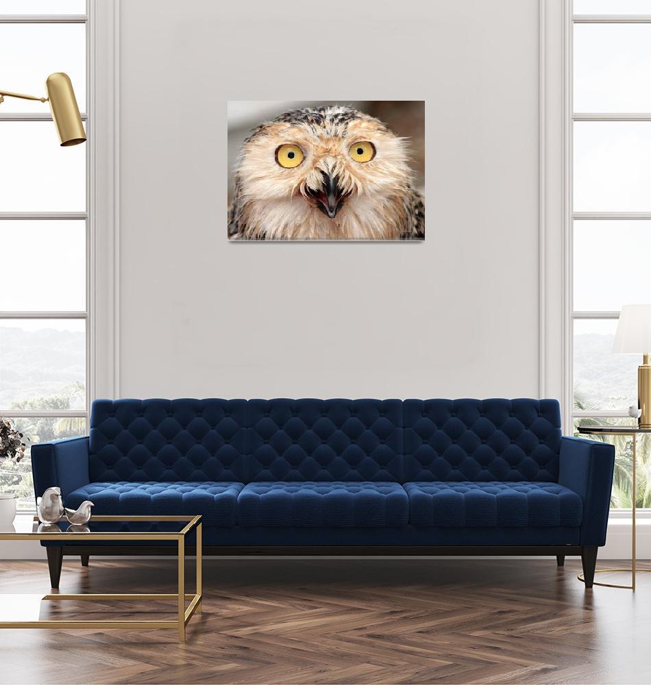 """Snowy Owl Juvenile""  (2006) by paulhood"