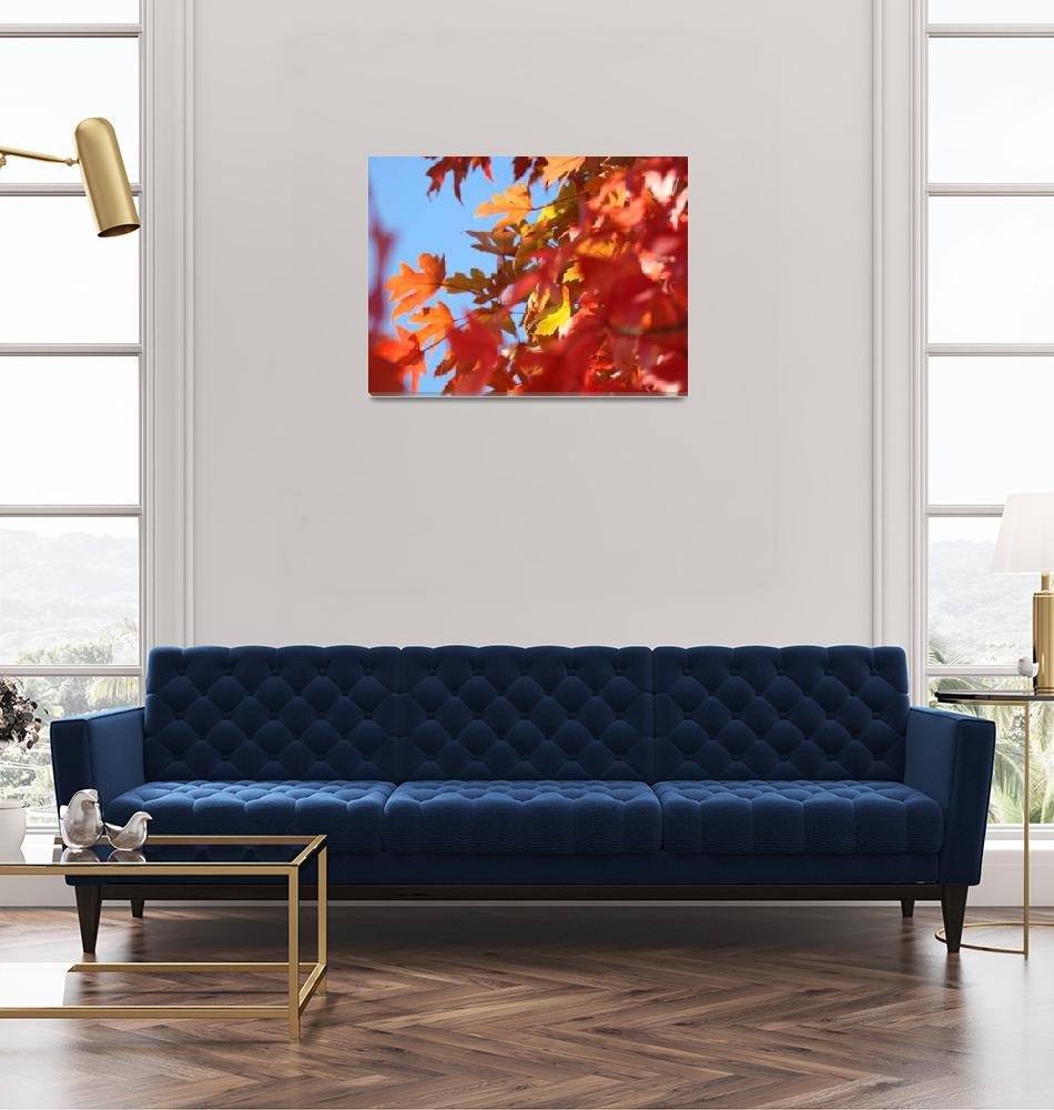 """""""Colorful Fall Tree Leaves art prints Autumn Baslee""""  (2011) by BasleeTroutman"""