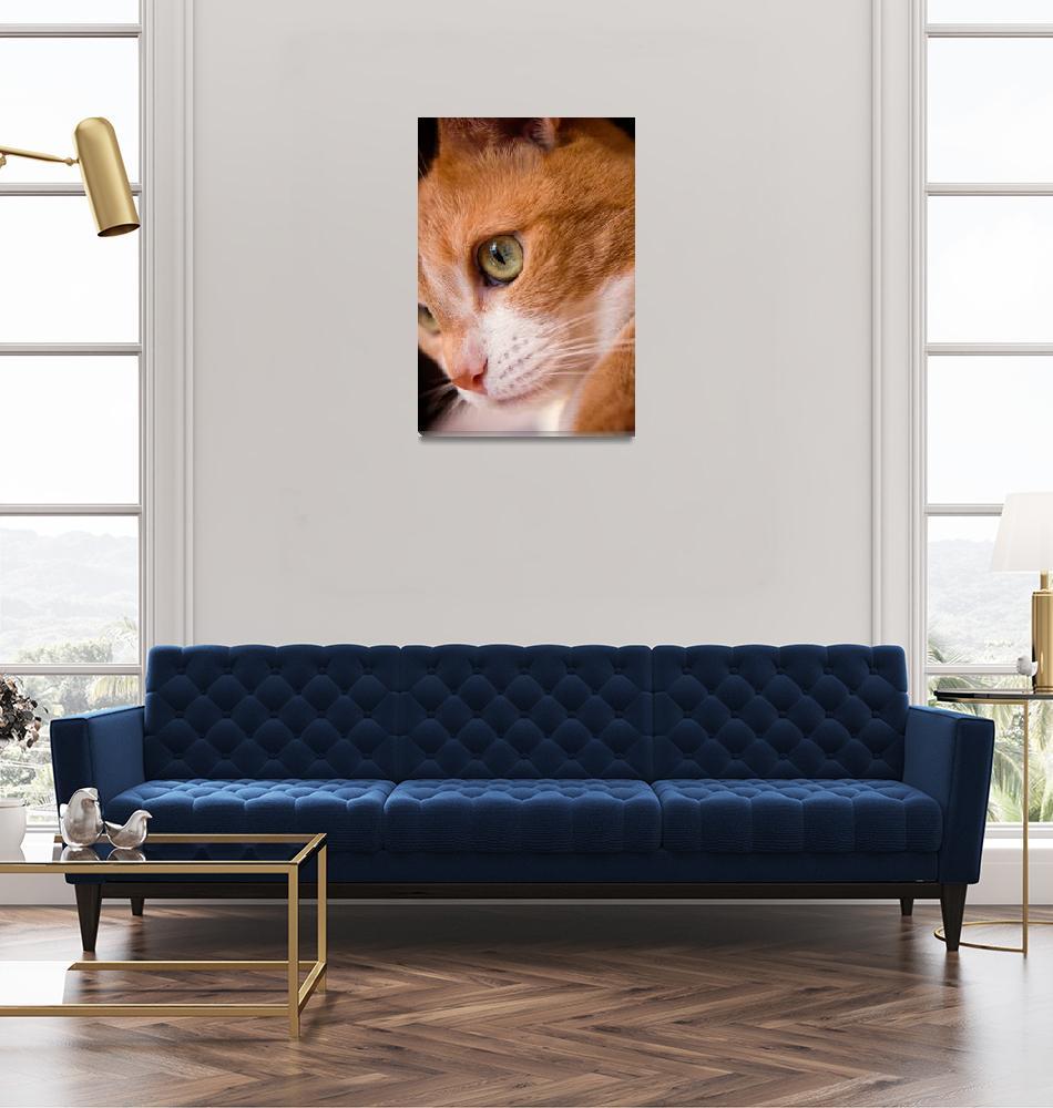 """Feline""  (2017) by builttofallapart"