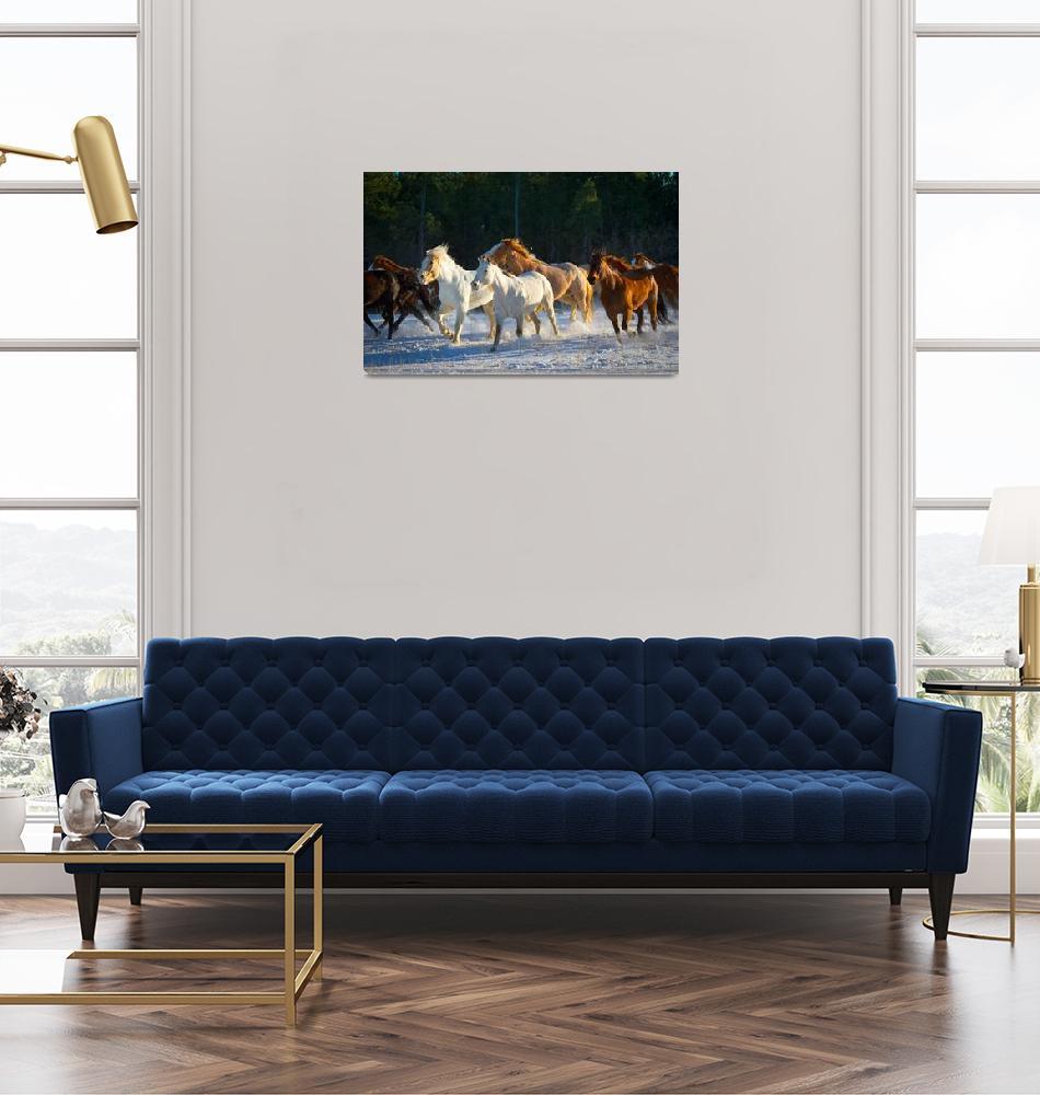"""""""Wyoming Horses""""  (2012) by Inge-Johnsson"""