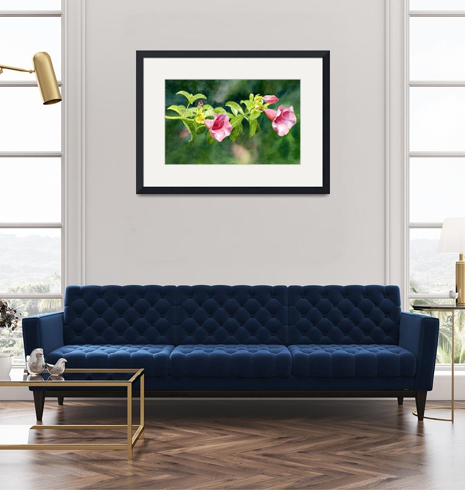 """""""Pink Allamanda Blossoms with Background""""  (2011) by Pacific-NW-Watercolors"""