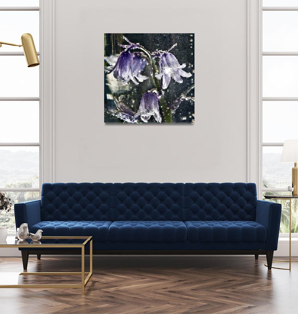 """""""Bluebell Flowers""""  (2010) by maxblack"""