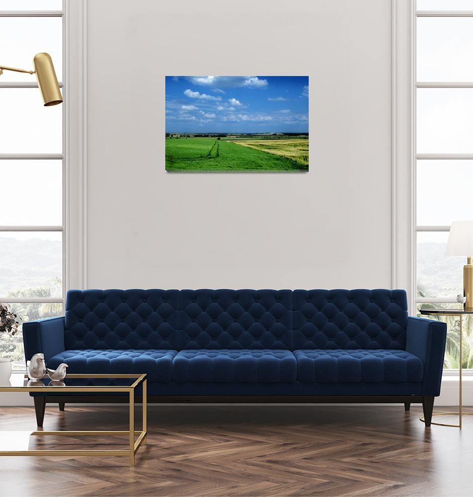 """German Landscape""  (2008) by seanschleifer"