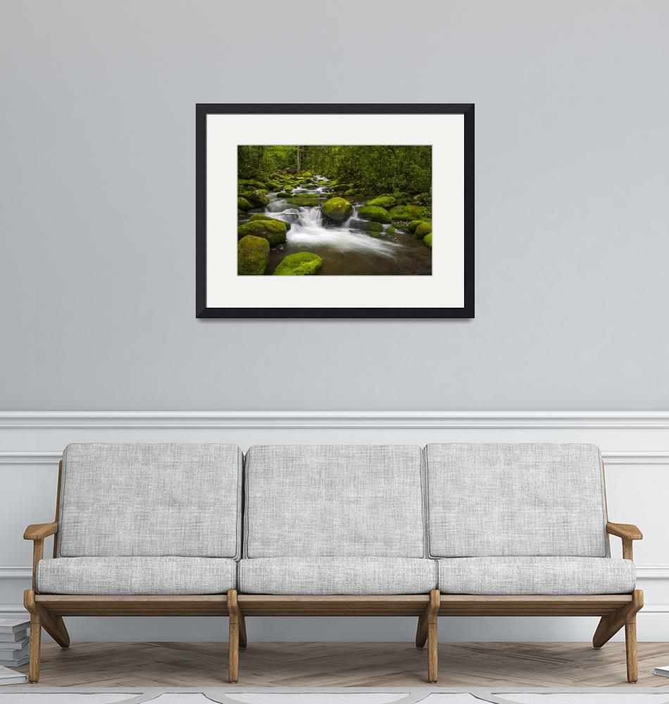"""""""Great Smoky Mountains National Park River Paradise""""  (2012) by DAPhoto"""