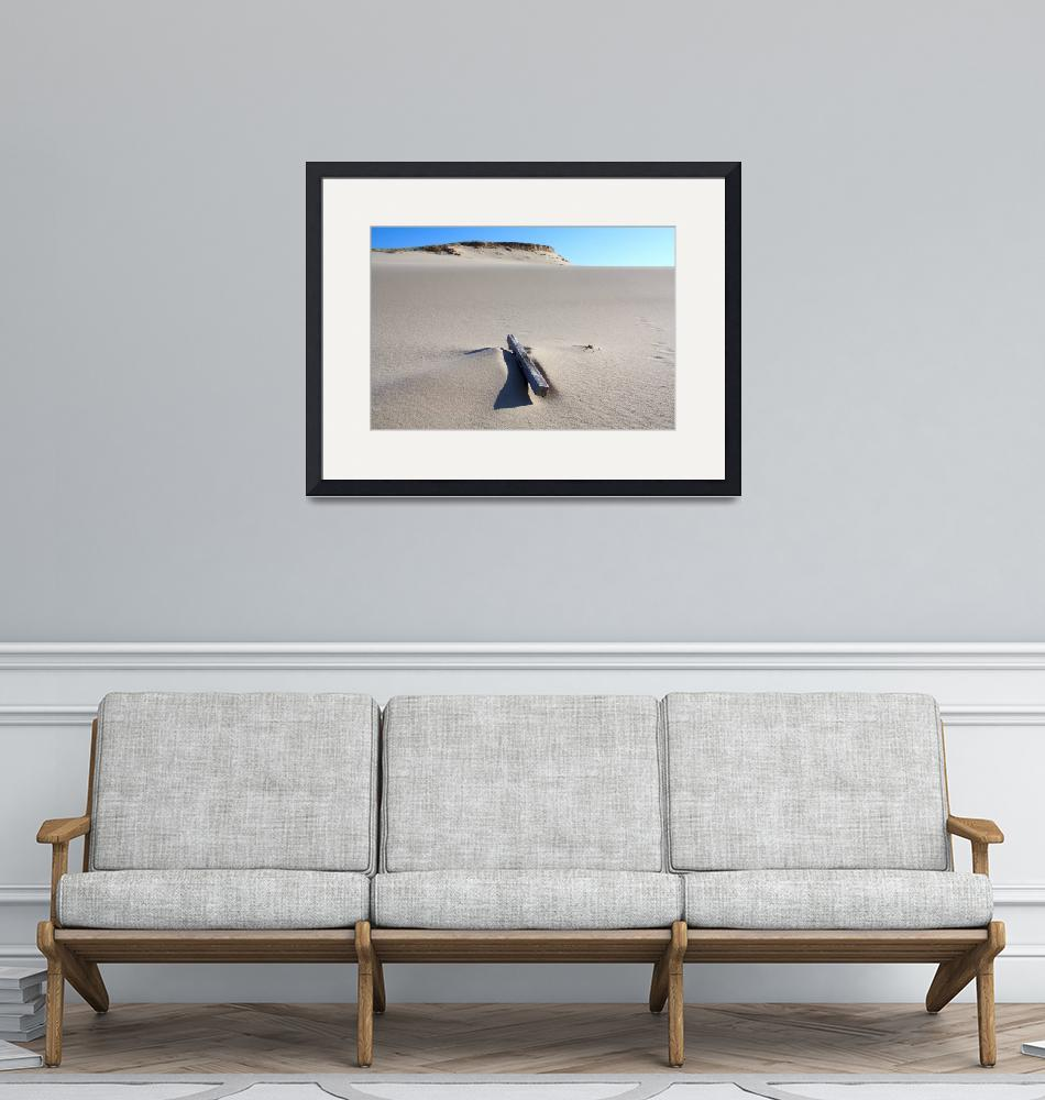 """""""Provincetown Beach Dune with Wood""""  (2009) by ChrisSeufert"""