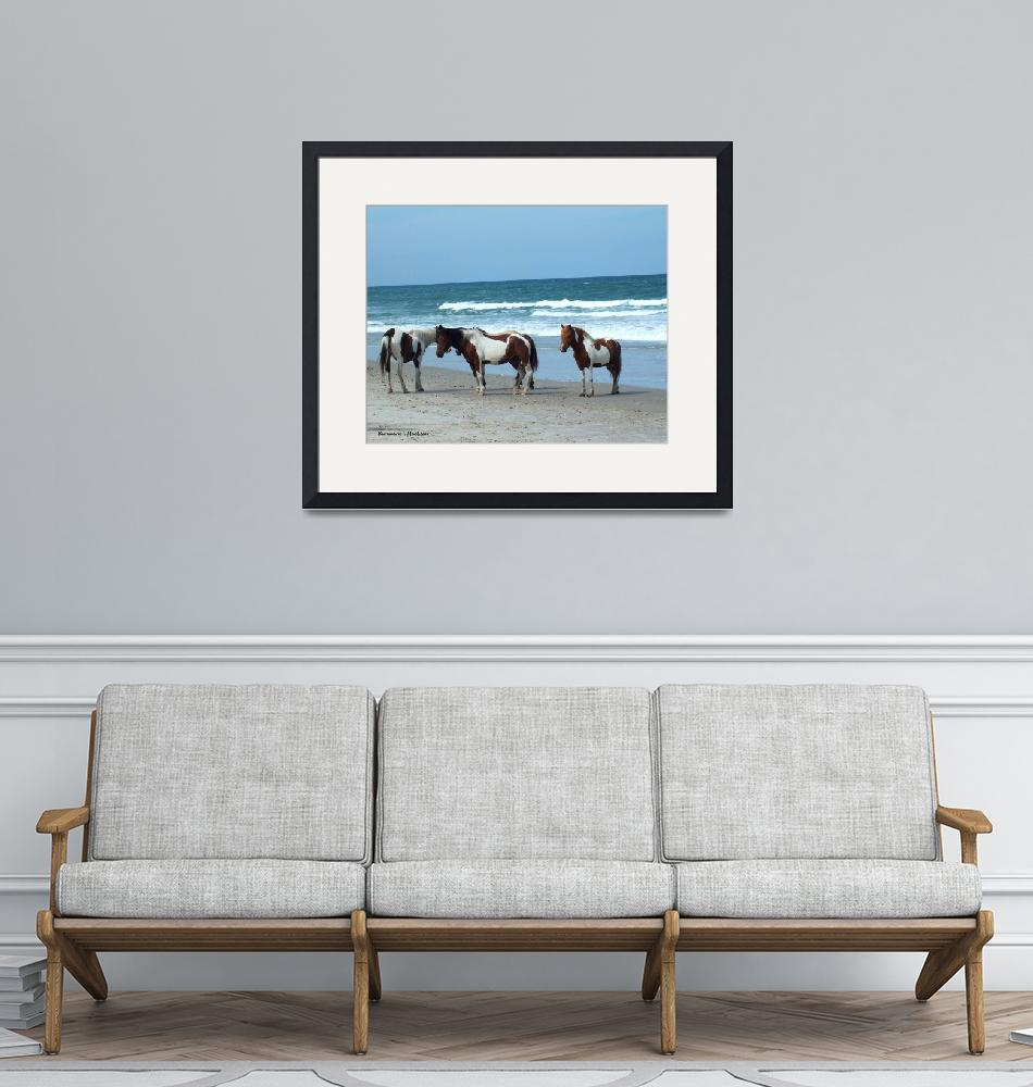 """""""Assateague 5""""  (2015) by Kimmary"""