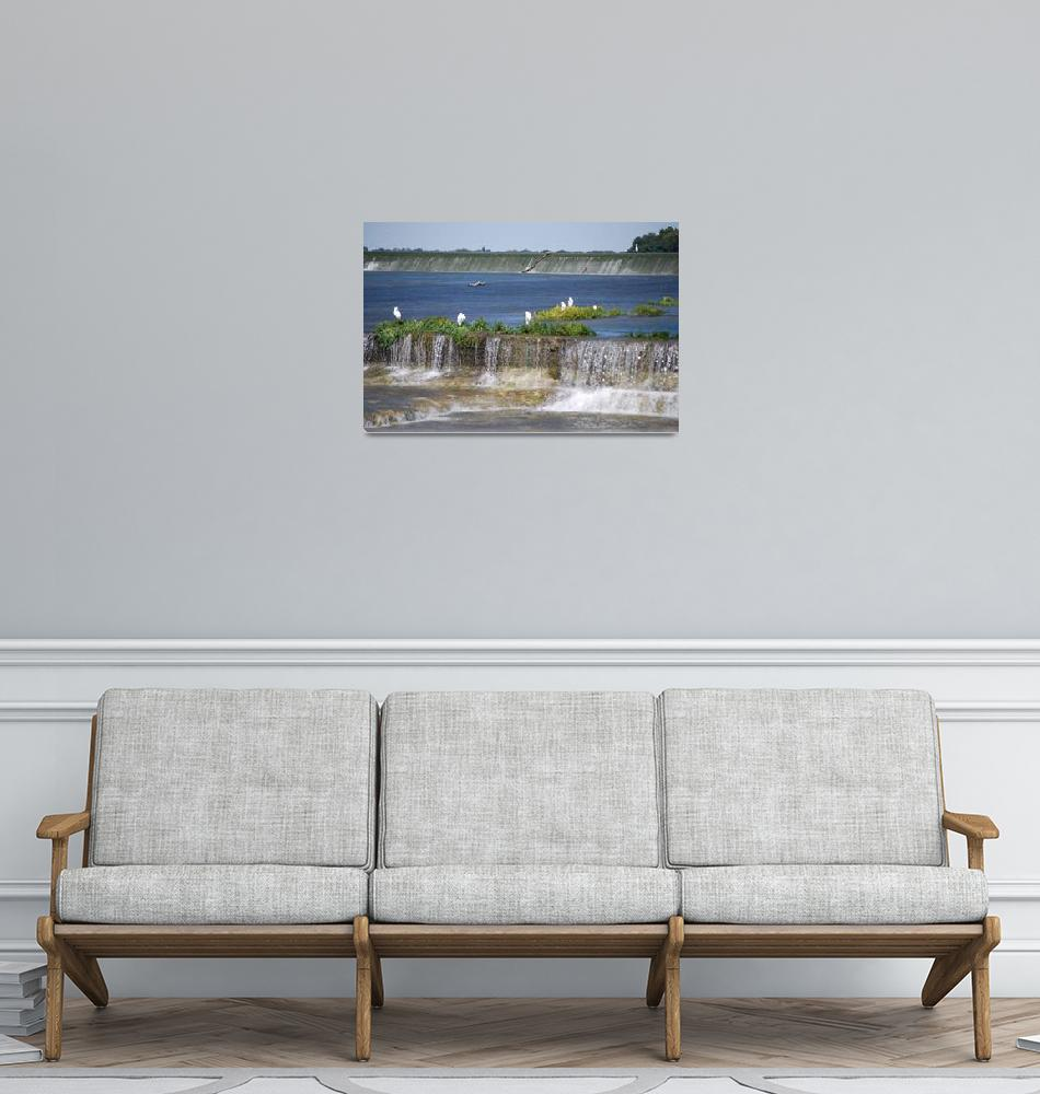 """Egrets Below Dam""  (2014) by GlendinePhotography"