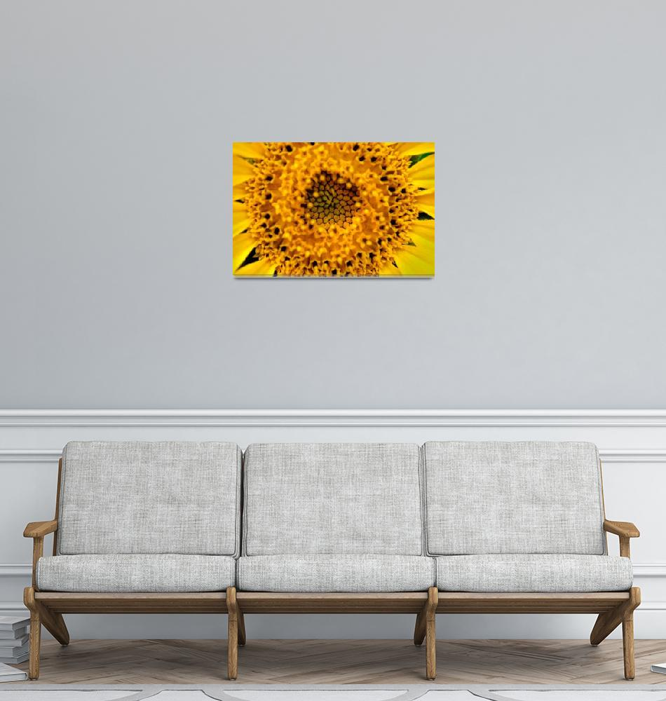 """SUNFOWER""  (2013) by Tezza"