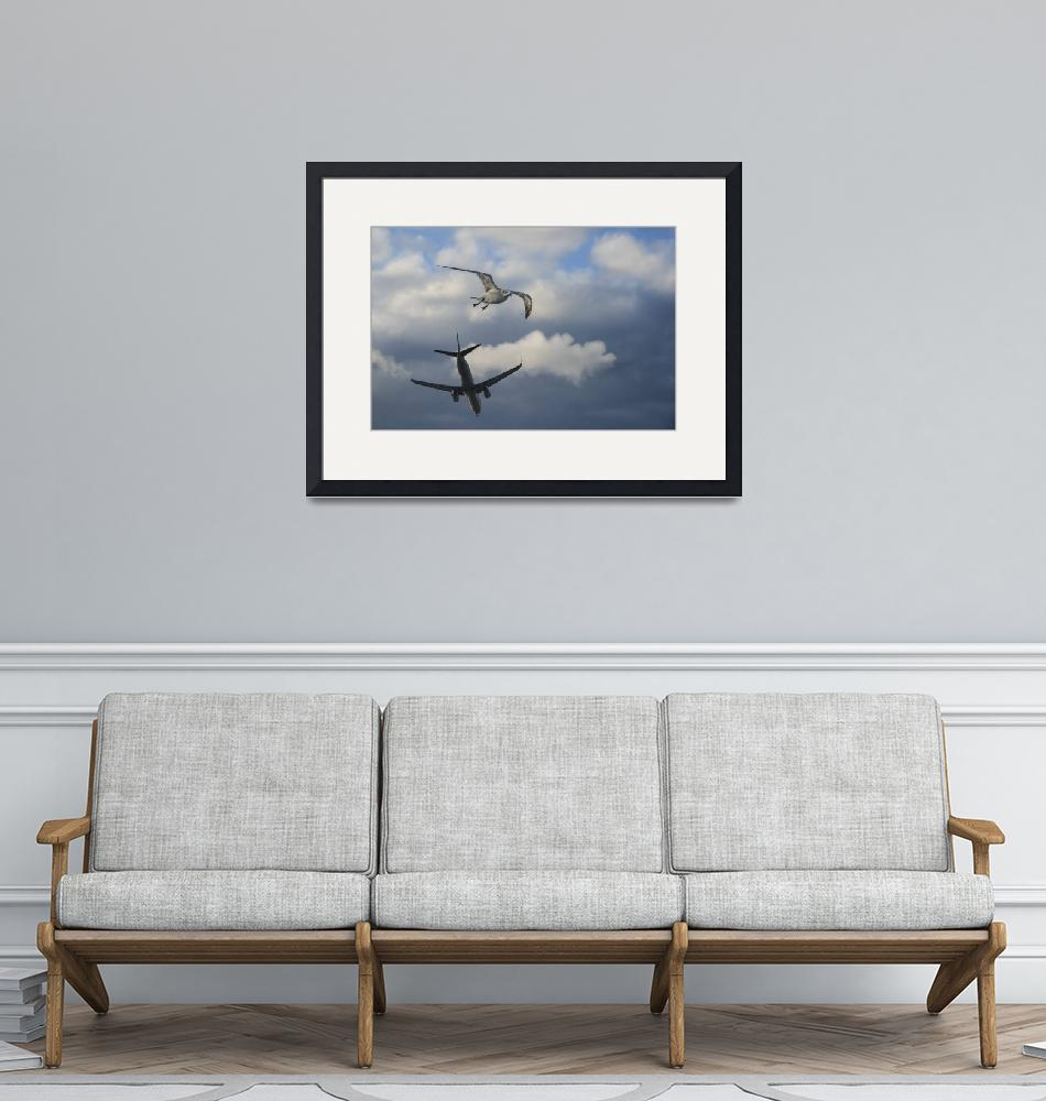 """""""seagullplane2583""""  (2015) by artyimages"""