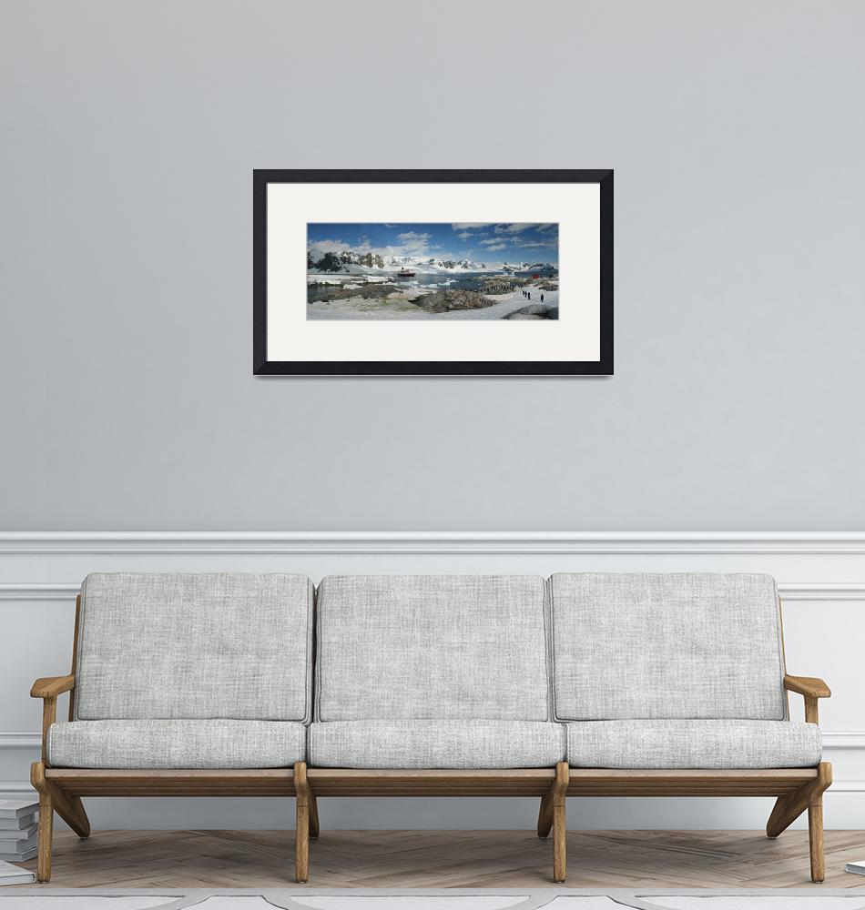 """""""Panorama - penguin colonies, cruise ship & tourist""""  by cascoly"""