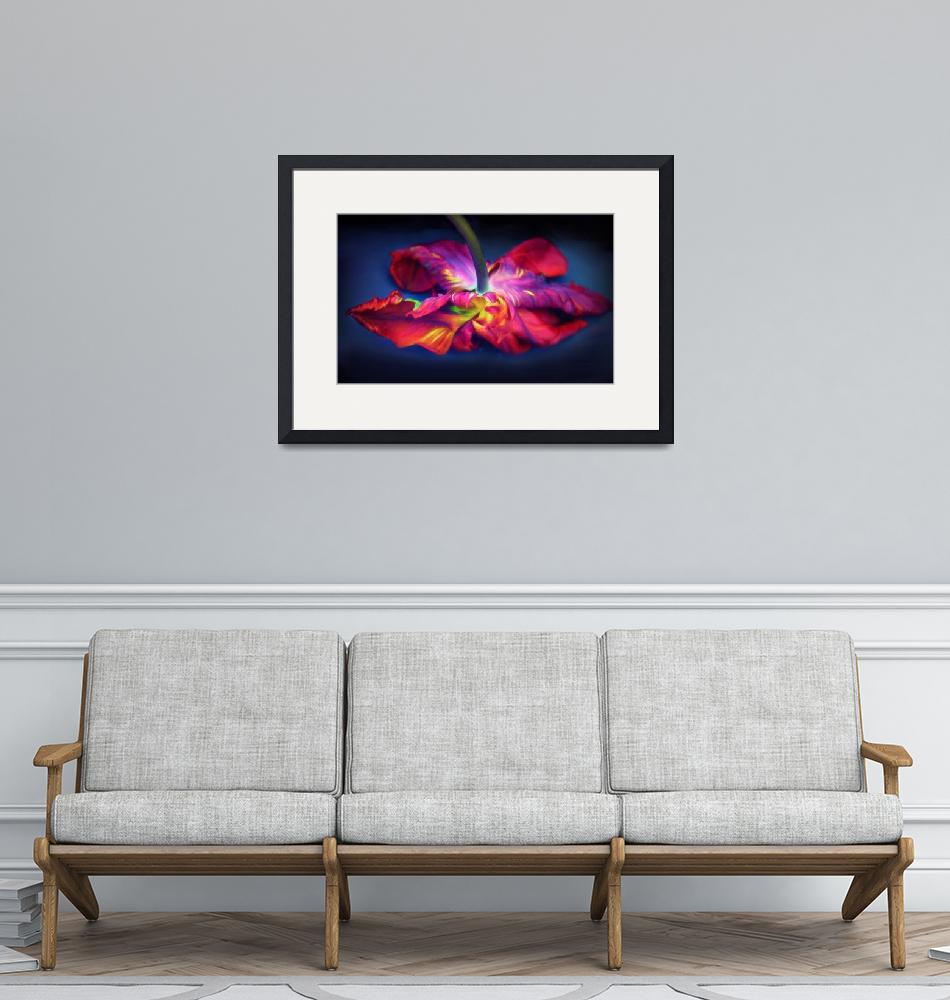 """""""Flaming Tulip Rococo""""  (2019) by JessicaJenney"""