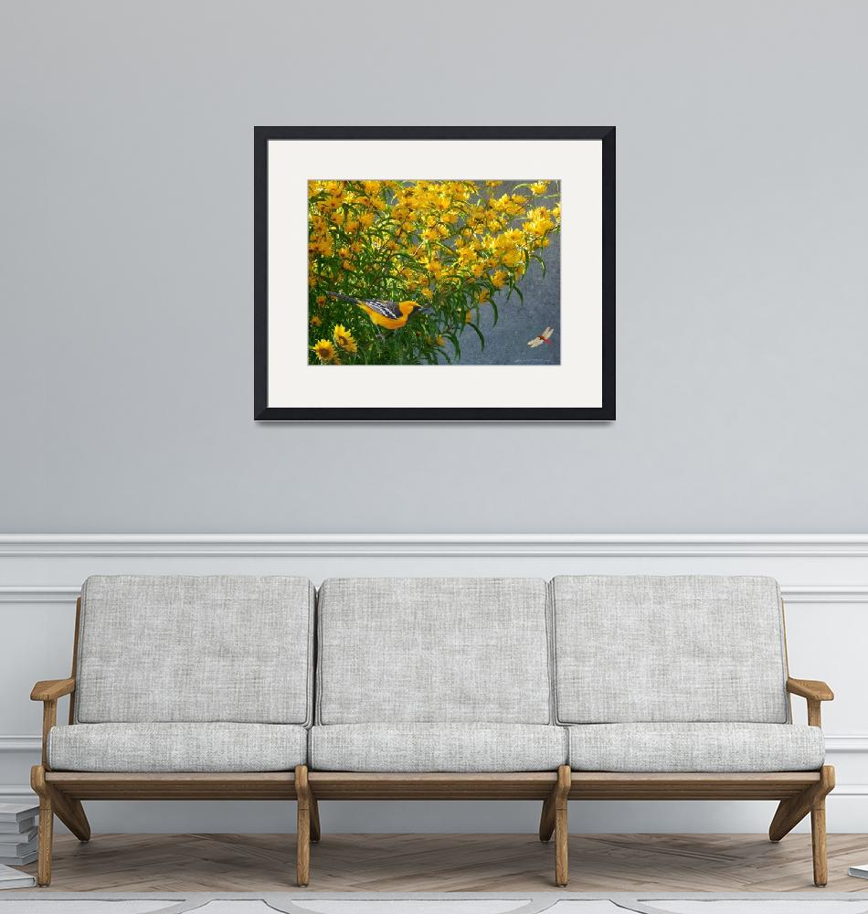 """""""yellow flowers hooded oriole""""  (2013) by rchristophervest"""