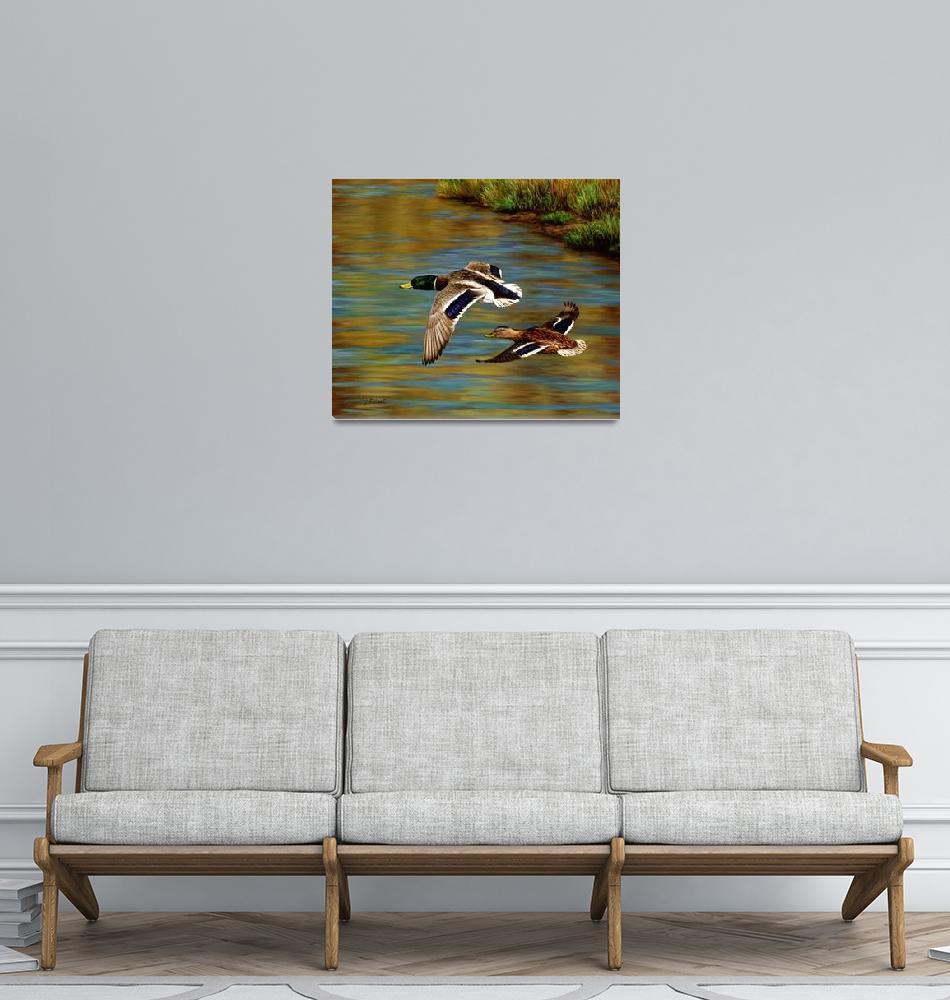 """Golden Pond""  by csforest"