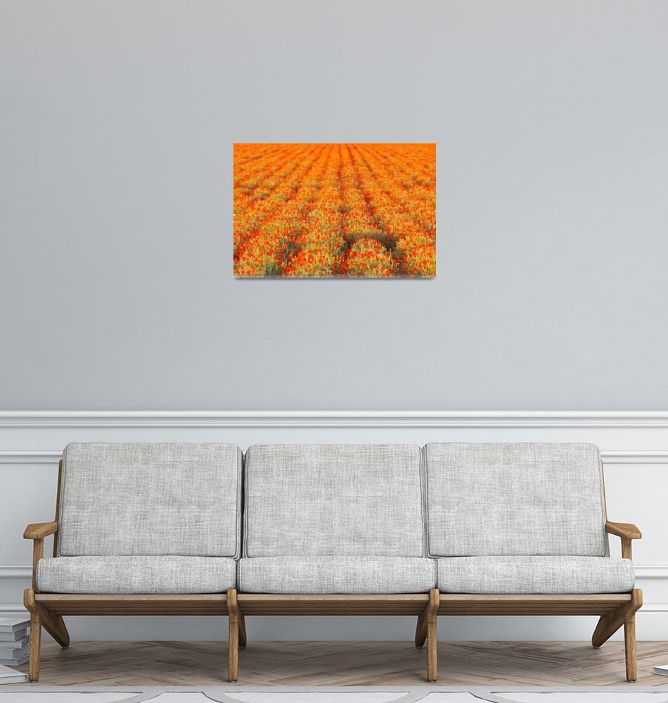 """""""Tulip Rows To Eternity""""  (2007) by OlamMasterImagery"""