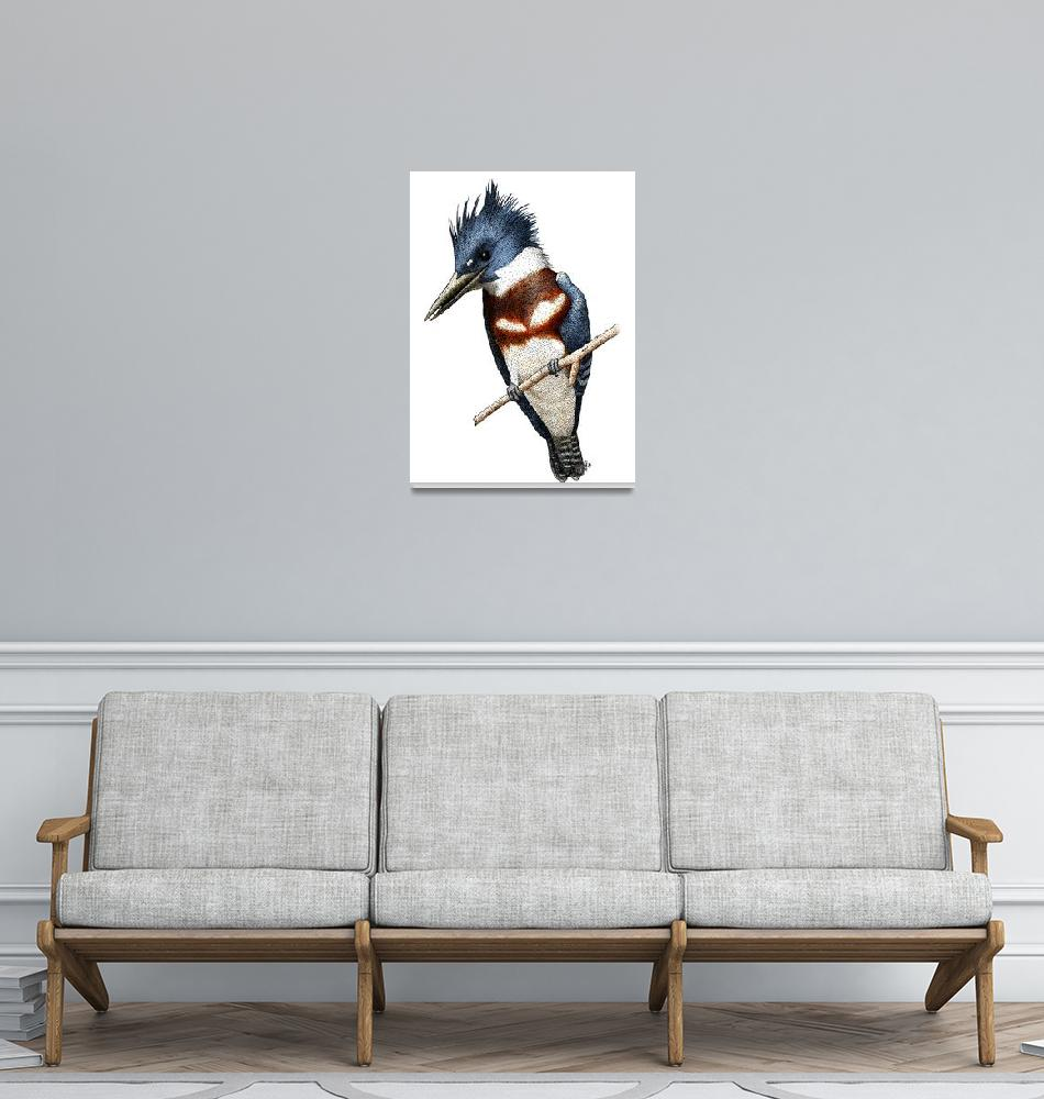 """""""Belted Kingfisher""""  (2008) by inkart"""