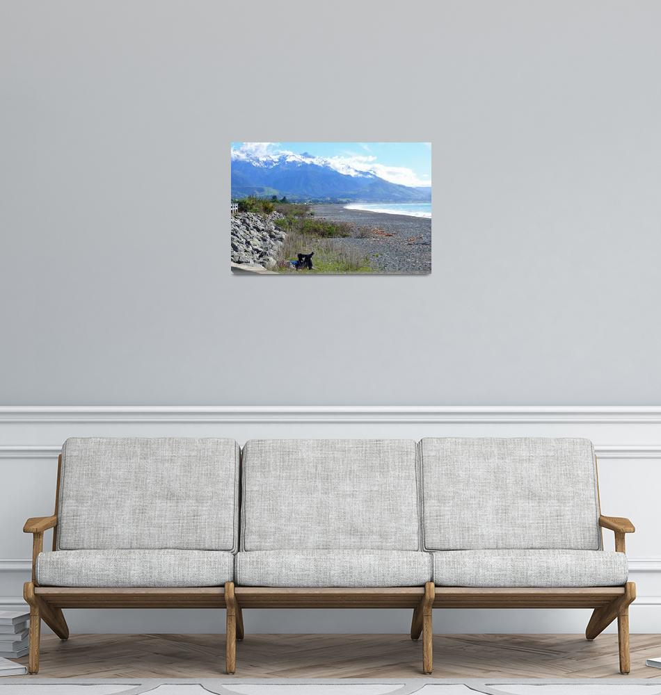 """""""Relaxing at the Beach, Kaikoura, NZ""""  (2008) by stockphotos"""