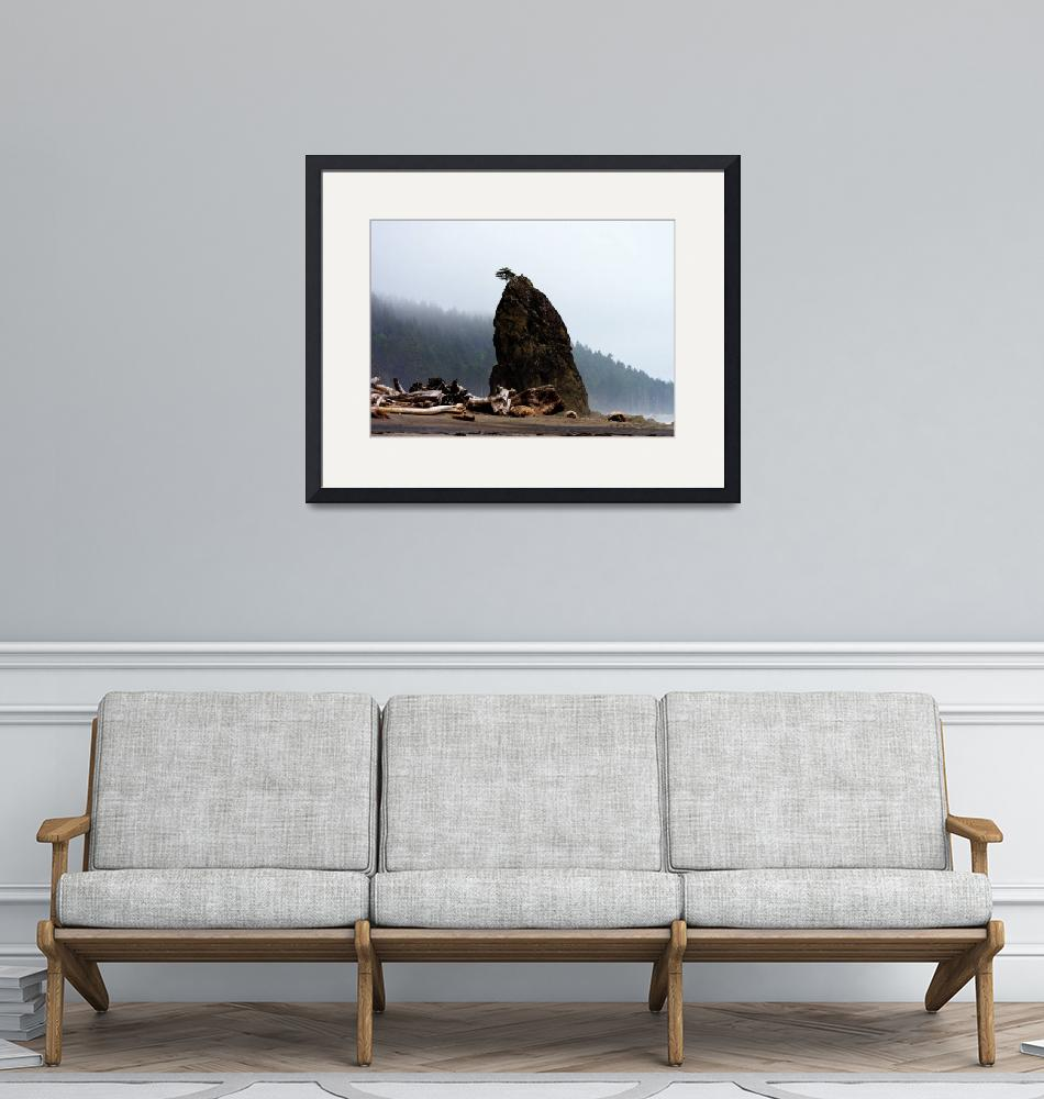 """""""Foggy Stack on Rialto Beach""""  (2006) by NWExposures"""