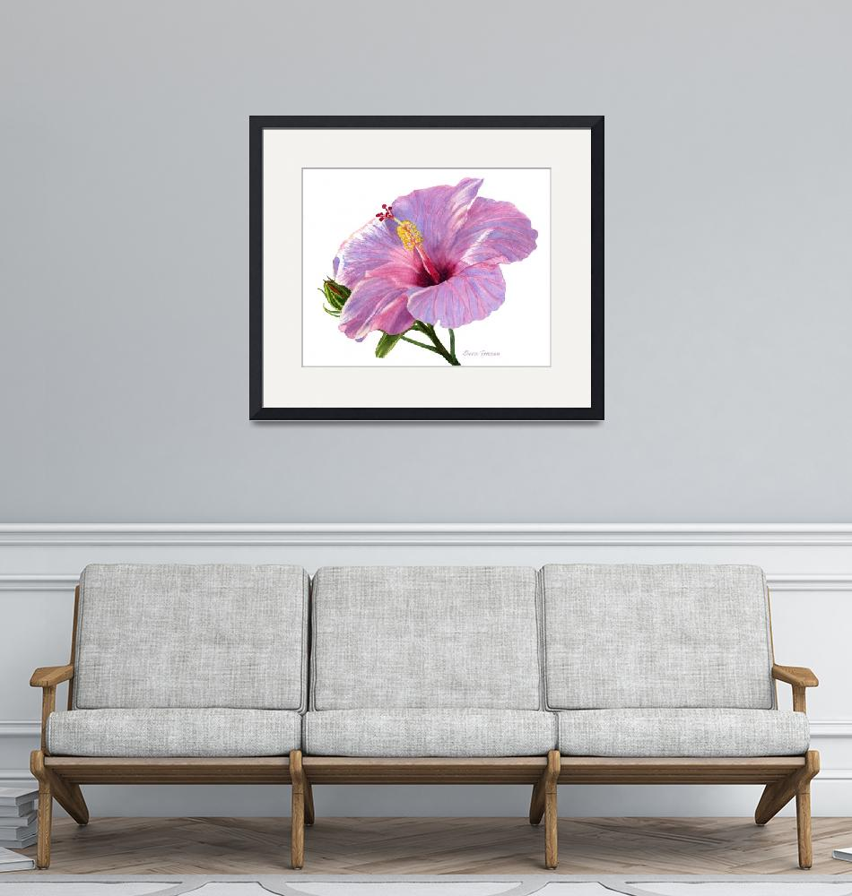 """""""Pink Hibiscus Blossom with Blue Shadows""""  (2016) by Pacific-NW-Watercolors"""