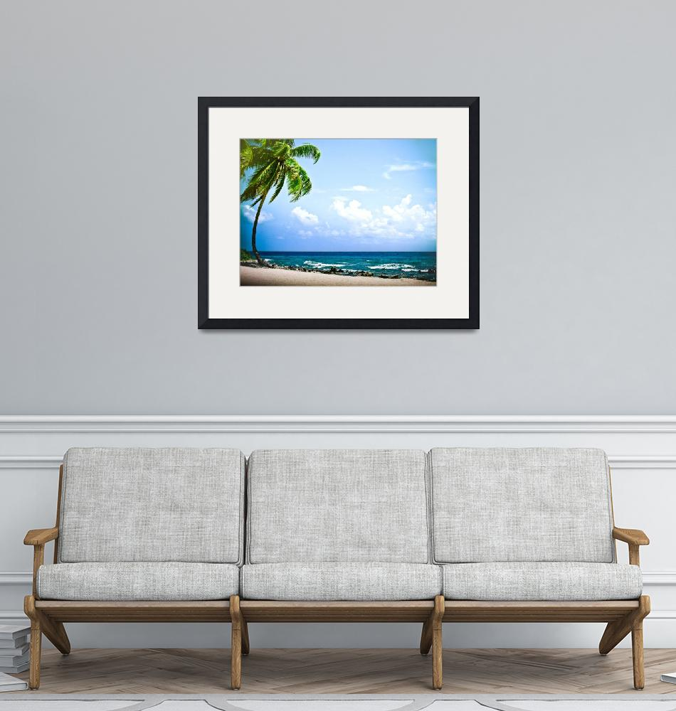 """""""BELIZE PRIVATE BEACH""""  (2010) by photographybyryankelly"""